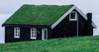 Dom zakupiony za gotówkę z gdańskiego skupu domów. Na dachu ma trawę, dookoła również jest trawa. Prosty, jedno-piętrowy domek z poddaszem.